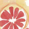 ジェラテリアVivo メニューポップ用イラスト 「青リンゴ・パッションフルーツ・ブラッドオレンジ・カンパリ・桃・巨峰」